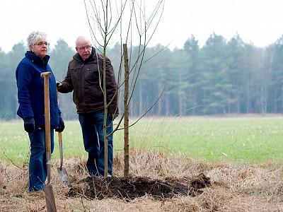 Plant een herinneringsboom als levend gedenkteken, ook bij geboorte of jubileum